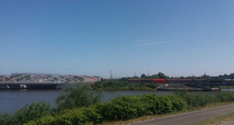 Spreehafenlauf 2018 – Elbinselcup Teil 1